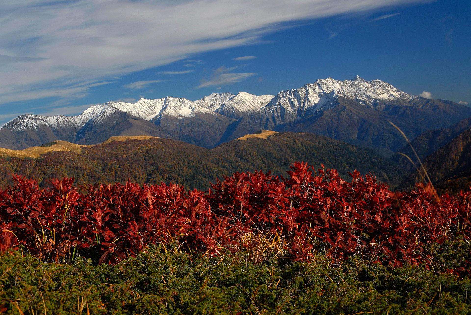 Узнайте обо всех путешествиях по Кавказу!